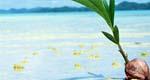 高級人気ホテルに泊まるおすすめの沖縄旅行&ツアー特集