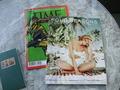 【スーペリアキングルーム / ガーデンビュー】私向きじゃなかった雑誌