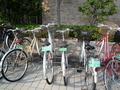 ホビーフェアへ行くのに便利なレンタル自転車