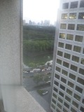 窓から皇居