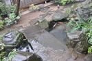 森鴎外住居の庭