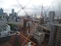 景色(朝)東京タワー