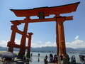厳島神社 大鳥居 干潮