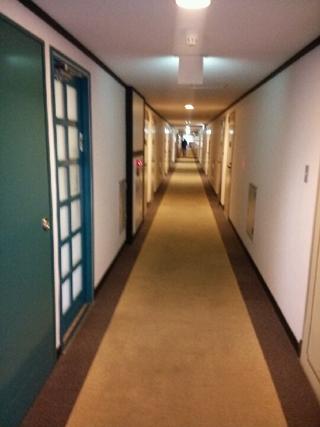廊下は明るめですね。