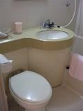 トイレは普通のユニットタイプ