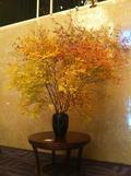 ロビーの造花