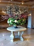 ロビーの花壇