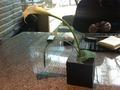 寿司六緑のテーブルのお花