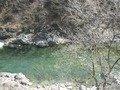 庭園から見た利根川