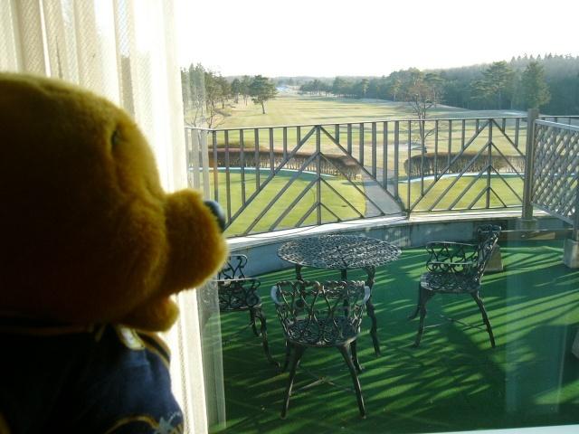 窓からの眺めウェルネスの森那須