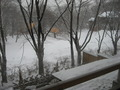 ちょっとのぞけば雪景色