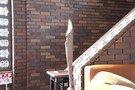 三階へと続く階段