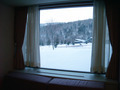 窓からの景色