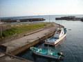 宿の目の前にある漁港