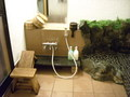 貸切風呂 洗い場
