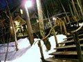 珈琲 森の時計への木の階段
