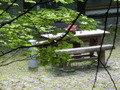 中庭のベンチとテーブル