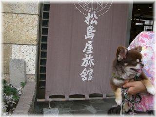 ワンコと同伴できる飯坂温泉で一押しの宿