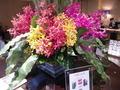 フロント前の花♪