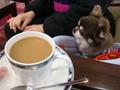 美味しいモーニングコーヒー