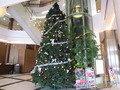 2011年のブリーズベイホテルのクリスマスツリー