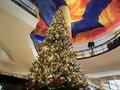2011年のクリスマスツリーのアップ