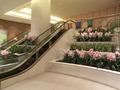2階から1階の宴会場へ通じるエスカレーター