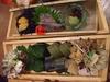 夕食の郷土料理(めはり寿司等)