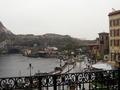 バルコニーから見た雨のパーク