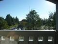 部屋から見た景色