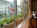 レストランや部屋からモノレールの線路が見えます
