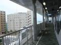 モノレール赤嶺駅のすぐそば。