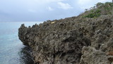 岩場のあたりを探検するのも楽しいです