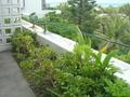 ベランダの花壇