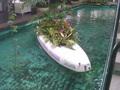 池にはボートが