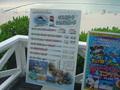 ナップ島体験ツアーが人気