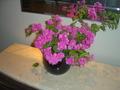 ロビーに展示されていた生花