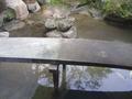 渡れない庭園の橋
