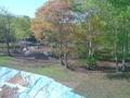 客室からの眺め(山側)