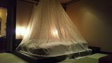 憧れの天蓋付ベッド