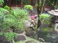写真クチコミ:庭園