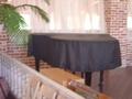 弾けないピアノ
