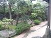 111号室 芍薬の間からの眺望