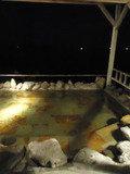 大浴場女湯の露天風呂・4