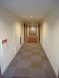 客室前の廊下の様子