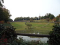 池とタンチョウ