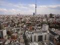 27F 仏蘭西料理 蒔絵から見た東京スカイツリー