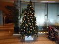 フロント横のクリスマスツリー