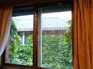 客室からの眺望