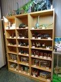 恐竜関連商品
